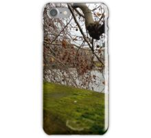 Moss Green River Views iPhone Case/Skin