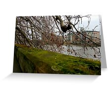 Moss Green River Views Greeting Card