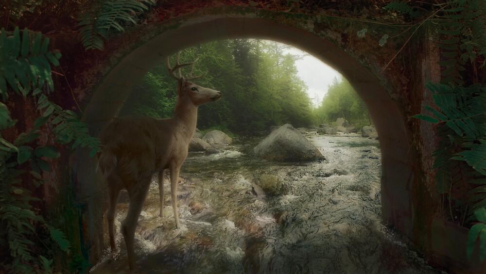 Pensive Threshold by Steve Hunziker