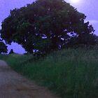 Moonlight by Fossdos
