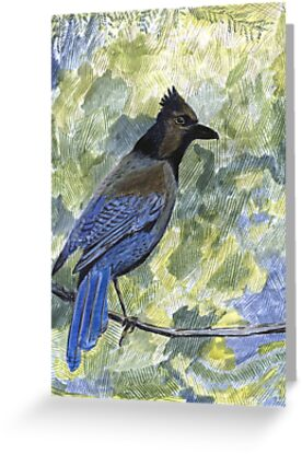 104 - STELLERS JAY  COLOURED PENCILS & WATERCOLOUR - JUNE 2003 by BLYTHART