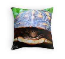 Box Turtle Throw Pillow