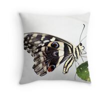 Lime Butterfly Throw Pillow