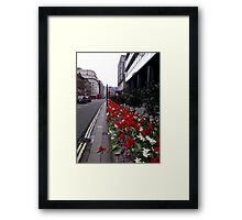 Red Tulip City Perspective Framed Print