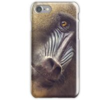Mandrill staring contest iPhone Case/Skin