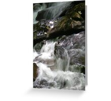 Rushing By Greeting Card
