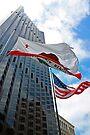 Downtown San Francisco Flags by Tamara Valjean