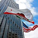 Downtown San Francisco Flags by Tamara Valjean