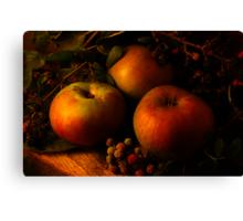 Autumn Apples II Canvas Print