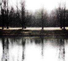 Trees by water by Steve Barnes