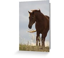 Standing ~Two~ Greeting Card