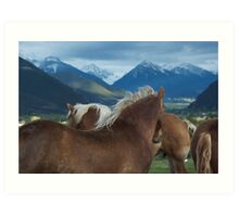 Manes & Mountains Art Print