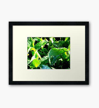 Green Carnage Framed Print