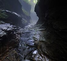 Upper Canyon at Rocky Hollow by Mark Heller