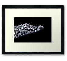 Crocodile Portrait Fine Art Print Framed Print