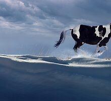 Wintry Runner by Steve Hunziker