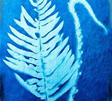 Garden Fern Sunprint by Barbara Wyeth