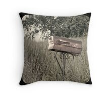 "Rural Delivery Triptych - ""faux"" TTV Throw Pillow"
