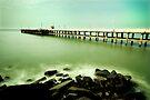 Green waters by Vikram Franklin