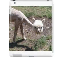 Cute, Hilarious Baby Alpaca iPad Case/Skin