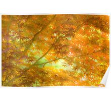 Sylvan Tapestry Poster