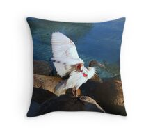 Australian White Ibis Throw Pillow