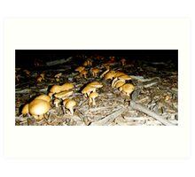 Mushroom Army  Art Print