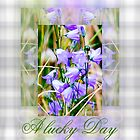 A Lucky Day by Doris B. Lambling's colorgetics