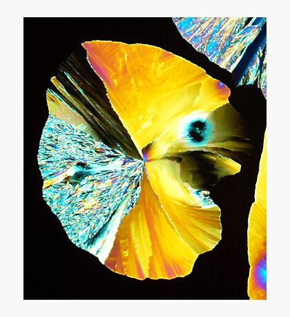 Crystal Pacman Photographic Print