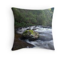 Aire River Rapids Throw Pillow
