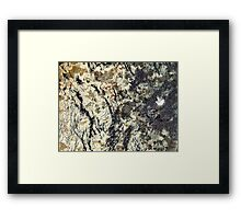 The Hidden Land - To the Black Woods Framed Print