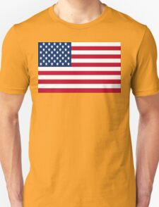 AMERICA the BEAUTIFUL..... Unisex T-Shirt