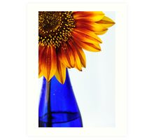 primary colors Art Print