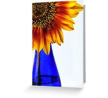 primary colors Greeting Card