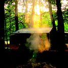 Camp Shine by mooner1