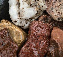 Wet Rocks by susan stone