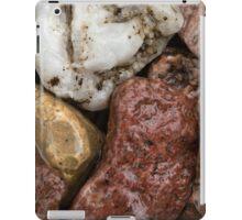 Wet Rocks iPad Case/Skin