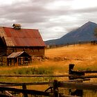 Old barn in Fall by Vendla