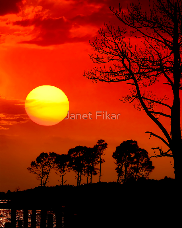 Summer Nights by Janet Fikar
