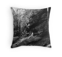 031207-69 Throw Pillow