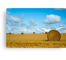 Hay Bales: East Sussex UK Canvas Print