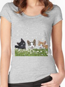 kittens Women's Fitted Scoop T-Shirt