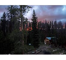 Of Pine Beetles and Forest Fires Photographic Print