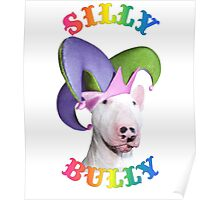 Silly Bully Poster