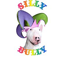 Silly Bully Photographic Print