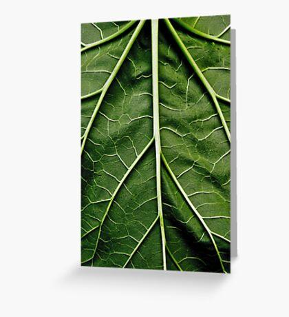 Rhubarb leaf Greeting Card