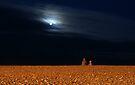 Moonlight Sonata by George Parapadakis (monocotylidono)
