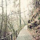 Vintage Walkway by Mark Willson