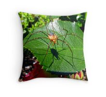 Harvestmen on a Rose Leaf Throw Pillow