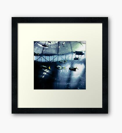 Fish & High Technology Framed Print